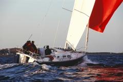 Cafe30 - cruising sailboat - spinnaker