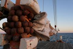 Nofy Be - traditional gaffed rig schooner - mast